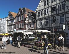 Celle, Marktgeschehen (bleibend) Tags: 2018 em5 leicadgsummilux15mmf17 omd ce celle m43 markt mft niedersachsen olympus olympusem5 olympusomd