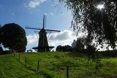 """Molen """"Den Haas"""" (big moustache) Tags: zeeland zélande nederland netherlands paysbas denhaas molen moulin mill zierikzee"""