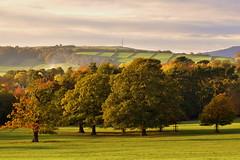 Autumn Landscape (mmmtog) Tags: autumn landscape trees colour sky derbyshire peakdistrict green brown fields