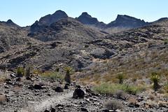 Sloan Canyon (pchgorman) Tags: northmcculloughwilderness sloancanyonnationalconservationarea nevada clarkcounty october deserts landscapes