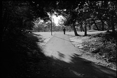 Late afternoon walk (nfocalypse) Tags: hc110b 135 meadowvale hp5 canona1 boxspeed a1