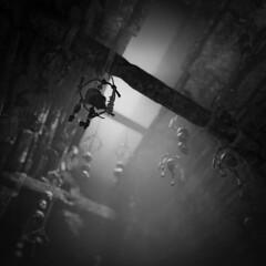 Shadow of the Tomb Raider (BlackFishMaker) Tags: shadow tomb raider videogame game screenshot