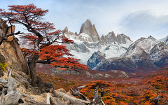 """""""Fire and Ice"""" (Jeff Stamer (Firefallphotography.com)) Tags: argentina elchalten firefallphotography firefallphotographycom jeffstamer losglaciaresnationalpark miradordelfitzroytrail mountfitzroy patagonia places southamerica mirador del fitzroy trail"""