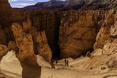 Wall Street Switchbacks in Navajo Loop Trail, Bryce Canyon National Park, Utah (ttchao) Tags: brycecanyonnationalpark utah nikon d810 2470mm navajolooptrail switchbacks wallstreet