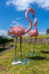 Killalea State Park (1 of 12) (pyl_71) Tags: killalea state park the farm beach nsw illawarra statues art sun kite surfing