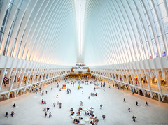 Ants (explored 07/10/18 #1) (MarkWaidson) Tags: oculus manhattan newyork station transport hub expensive