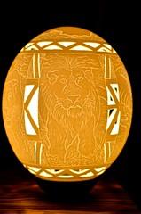 DSC_7880 (Бенуа Брэгонов) Tags: afriquedusud africa afrique southafrica egg oeuf autruche ostrich lion art