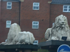 Great Bridge roundabout lion sculptures (ell brown) Tags: greatbridge tipton blackcountry sandwell westmidlands england unitedkingdom greatbritain roundabout trafficisland lion lions statue statues sculpture sculptures car horseleyheath marketplace newrd greatwesternway marble