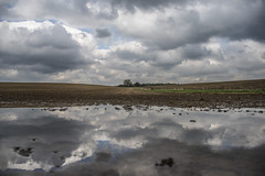 Field of dreams (Paul Wrights Reserved) Tags: cloud clouds cloudscape cloudy reflection reflections reflectionphotography sky skyscape skyandclouds puddle puddlephotography