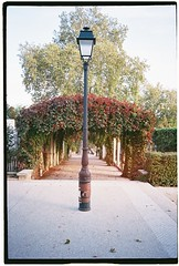 Autumn in Montmartre (lucapascotto) Tags: olympusxa film filmphotography superia400 paris analogic autumn 35mm