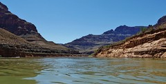 View of the Colorado River in the Grand Canyon (Susan Roehl) Tags: nationalparkstour2017 grandcanyon arizona usa wondersoftheworld 1800millionyearsold geologicformations helicopteraccess semiariddesert 8000feetgradient aridclimate prehistoricfossilsfound noanimalsseen sueroehl lumixdmcgh4 12x35mmlens wideanglelens handheld canyon landscape rock trail