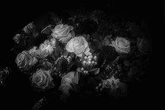 Roses ... (Julie Greg) Tags: flower flowers rose roses decoration monochrome bw details canoneos800d
