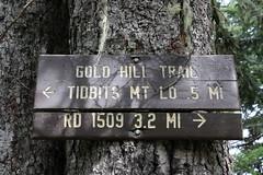 Tidbits Mountain-035 (rozoneill) Tags: tid bits mountain mckenzie river blue lake willamette national forest hiking oregon
