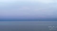 Emmenez moi ..... (croqlum) Tags: soir eté minimaliste lightofamoment baltique scandinavia europe lumièrerasante evening bluehour mer lumièreduninstant ystad summer plage minimalist beach light sea landscape paysage colors couleurs suède lumière scandinavie heurebleue