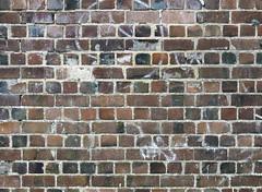 brick (chrisinplymouth) Tags: wall brick texture englishbond plymouth devon england uk city cw69x brickwork inexplore
