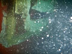 DSCN1153 (OpalStream) Tags: hull container underwater marine growth rudder blade rust antifouling