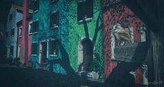 Bambola Grand Opening Photocontest (larisalyn (Rachel)) Tags: owls owl street houses trees shadows streetsign secondlife