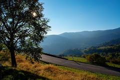 Journey (ZeGaby) Tags: alsace hdr landscape naturephotography paysage pentax2470mm pentaxk1 road sun soultzeren hautrhin france fr