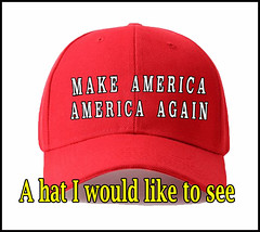 American hat  meme (rjk9601) Tags: hats humor politics meme memes maga funny