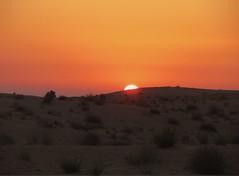 Sunset desert (chiarabaesso) Tags: arabian desert sunset orange nature