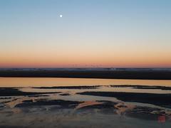 (Takako Kitamura) Tags: oregoncoast southbeach beach dawn texture moon fullmoon harvestmoon
