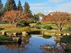 Nikka Yuko Japanese Garden visit 15 (benlarhome) Tags: nikkayuko lethbridge alberta canada autumn fall
