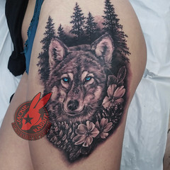 Wolf Grey Timber Wild Dogwood Flower Blossom Pinecone Pine Cone Tree Trees Portrait Blue Eyes Real Realistic Best 3D Tattoo by Jackie Rabbit