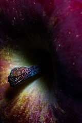 Astro Apple (Johan Medina Fotografía) Tags: ifttt 500px magical closeup fresh mysterious close up atmospheric mood magic mid section effect arm macro fruit apple