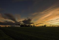 Home Before Dark 2 (DXW1978) Tags: durhamlakewater hardwickhall sunset nature landscapepanasonic lumix fz80 fz82 raw dusk clouds trees