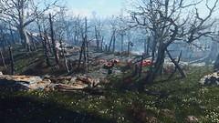 Fallout 4 (screenreel) Tags: fallout4 bethesda graphics digitalart engine trees road light sky sun grass vehicle clouds postapocalypse wasteland radiation day forest wood rock tree bridge