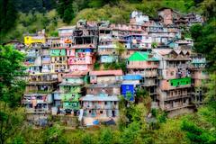 darjeeling hills.jpg (Gerrykerr) Tags: ngc xt3 fujix colour color travel darjeeling india 2018 places iged