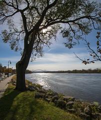 Upper Mississippi at La Crosse, Wisconsin (CNygren) Tags: lacrossecounty places riversidepark