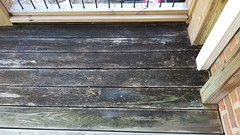 Deck Before (Weathered, damaged)