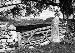 Gate (StephenL in Settle) Tags: stackhouse autumn uk england season northyorkshire settle