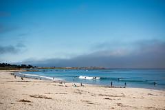 asilomar (dolanh) Tags: californiacoast beach pacificgrove asilomar monterey
