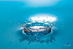 Water Drops #7 (Simone_Callegari) Tags: water waterdrops drop drops waterdrop macro macrophotography nikon nikond850 d850 105 105mm nikkor colors colori colores color acqua gocce goccia
