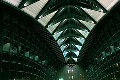 Transportation Hub (Le.Patou) Tags: france auvergnerhônealpes rhône airport station tgv train aéroport lyonsaintexupéry architecture modern ceiling roof inside eos eosm line lines