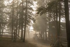CO-Oct-2018 (20 of 26) (codywellons) Tags: colorado idahosprings reservoir co fog