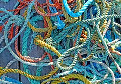 DSC03184 - Tangled (archer10 (Dennis) 196M Views) Tags: sony a6300 ilce6300 18200mm 1650mm mirrorless free freepicture archer10 dennis jarvis dennisgjarvis dennisjarvis iamcanadian novascotia canada peggyscove fishing village rope colour texture