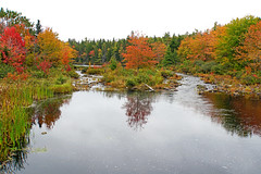 DSC03207 - Great Fishing Spot (archer10 (Dennis) 196M Views) Tags: timberlea sony a6300 ilce6300 18200mm 1650mm mirrorless free freepicture archer10 dennis jarvis dennisgjarvis dennisjarvis iamcanadian novascotia canada autumn fall colours trees