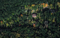 The Forest House (free3yourmind) Tags: forest woods house middle trees view above aerial belarus