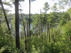 Lake of the Woods 4 (D. S. Hałas) Tags: halas hałas canada ontario sudburydistrict manitoulindistrict carlyletownship killarney killarneylakelandsandheadwatersprovincialpark lakeofthewoodstrail lakeofthewoods