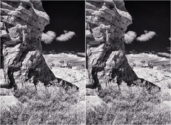 Formations IR (turbguy - pro) Tags: bw infrared stereo 3d crosseye