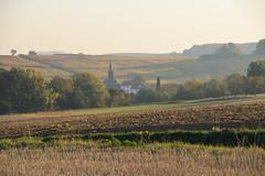 Paisible matin d'automne (Croc'odile67) Tags: animaux d3300 sigma contemporary 18200dcoshsmc paysage landscape vosgesdunord vigne vignoble brume mist automne autumn
