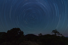 Startrails over Sunset Crater, AZ (alastairpoll) Tags: night nightphotography startrails astrophotography northstar arizona flagstaff trees sunsetcratervolcanonationalmonument star
