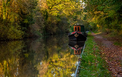 Barge on the Worcester and Birmingham Canal (Peter Quinn1) Tags: barge longboat worcesterandbirminghamcanal autumn warwickshire hopwood canal