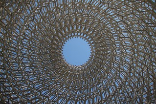 POV - Through The Hive