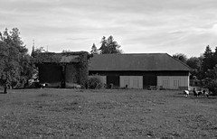 PASTURE AND PARTS OF THE STABLE (LitterART) Tags: stall weide pasture stable pferde horses pony equestrian chevaux austria österreich