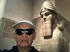 branko - lamassu (branko_) Tags: lamassu metropolitan museum art ancient near eastern east nisroch sargon asur ashur