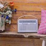 Ein Retro-Radio vor Holzwand mit Feldblumen und rot weiß kariertem Kissen thumbnail